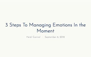 Link VastSkyLeadership Heidi Connal Article 3 Steps to Managing Emotions In The Moment