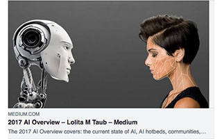 Link Medium Article Lolita Taub 2017 AI Overview